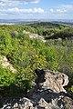 Pilisborosjenő, erdő, 2.jpg