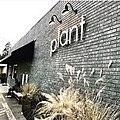 Plant exterior.jpg