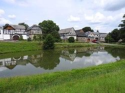 Pond Neugernsdorf 3.jpg