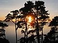 Pont albert louppe sunset (3).JPG