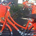 Portland bike share.jpg