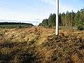Powerline and firebreak at Auchterhead Muir - geograph.org.uk - 294934.jpg