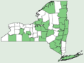 Prenanthes trifoliolata NY-dist-map.png