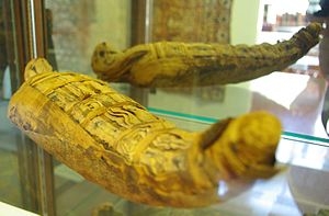 Prewitt–Allen Archaeological Museum - Mummified falcon on display at the museum