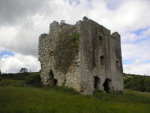 Shankill, Dublin - Puck's Castle.