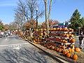 Pumpkins, Main Street, Keene NH.jpg