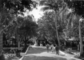 Queensland State Archives 1349 Arcadia Magnetic Island near Townsville c 1935.png