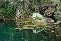 Quelle des Gorgazzo 01 in Polcenigo, Provinz Pordenone, Italien, Europäische Union.jpg