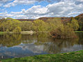Raj park Pond.JPG