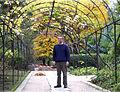 Ramón Morales Valverde, botánico español.jpg