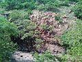 Ramdegi Hills 4.jpg