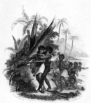 Kingdom of Tahiti - A scene from the Battle of Te Feipī, by William Ellis
