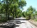"Reserve, NM, ""The Lane,"" 2012 - panoramio.jpg"
