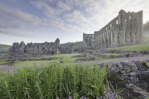 Aelred of Rievaulx - The ruins of Rievaulx Abbey on the River Rye in North Yorkshire.