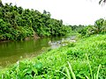 Rio San Miguel upstream.jpg