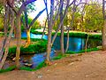 River-in-Big-Pine-CA.jpg