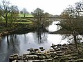 River Lune - geograph.org.uk - 613003.jpg