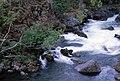 River Rapids, Rogue River-Siskiyou National Forest (36969018811).jpg