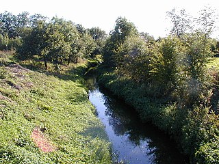 River Strine