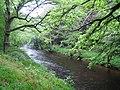 River Teign - geograph.org.uk - 439004.jpg