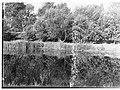 River Torrens(GN11522).jpg