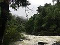 River in Khao Sok National Park.jpg