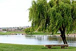 Riverside National Cemetery Peace.jpg