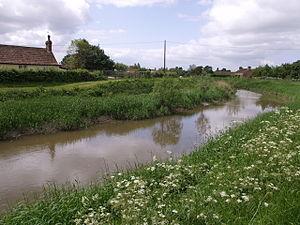 River Tone - The River Tone near Burrowbridge