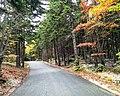 Road To Mt Pack Monadnock (240966999).jpeg