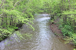 Roaring Creek (Pennsylvania) in springtime.JPG