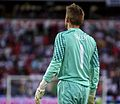 Rob Green from behind Norway-England.jpg