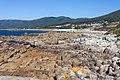 Rochas e mar en Portocubelo. Lira. Carnota. Galiza LI10.jpg