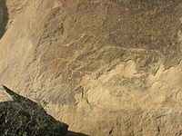 Rock art in Gobustan.jpg