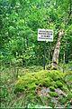 Roukli muistsed põllud ja iidne asustuskoht Lindmetsas.jpg
