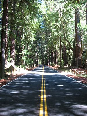 California State Route 128 - A relatively straight section of State Route 128 near Hendy Woods State Park.