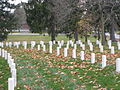 Rows of grave markers - Section 1 Marion Natl Cemetery PB190355.JPG