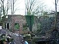 Ruin - geograph.org.uk - 682368.jpg