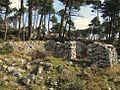 Ruins santa maria elba.jpg