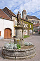 Rupt-sur-Saône 260409 04.jpg