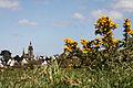 Saint-Thégonnec - Église Notre-Dame - PA00090441 - 002.jpg