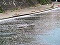 Sakurabashidori, Toyama, Toyama Prefecture 930-0004, Japan - panoramio (3).jpg