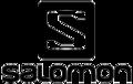 Salomon group logo.png