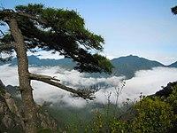 Sanqingshan National Park