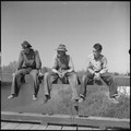 San Joaquin Valley, California. Contract Labor. The youngest migrant agricultural workers of American stock, and an... - NARA - 532160.tif