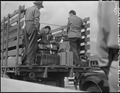 San Pedro, California. Trucks were jammed with suitcases, blankets, household equipment, garden too . . . - NARA - 536774.tif