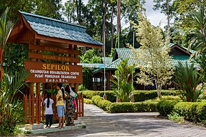 Sepilok Orang Utan Rehabilitation Centre - The Sepilok Orangutan Rehabilitation Centre main gateway.