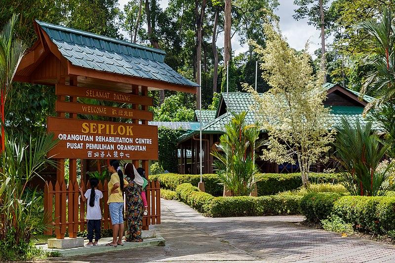 File:Sandakan Sabah Sepilok-Orangutan-Rehabilitation-Centre-01a.jpg