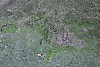 Sanilac Petroglyphs Historic State Park Park in Michigan, USA