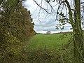 Schimmert-Terrein Billicherweg (2).JPG