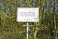 Schleswig-Holstein, Kellinghusen, kleiner Rensinger See NIK 9579.JPG